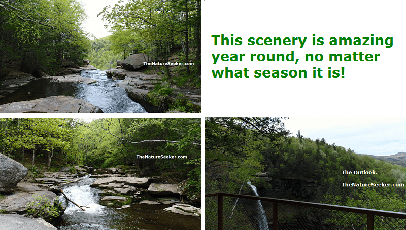 kaaterskill falls images