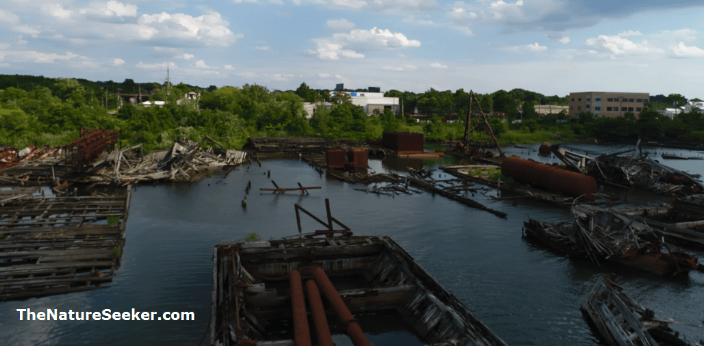 arthur kill ship graveyard photo