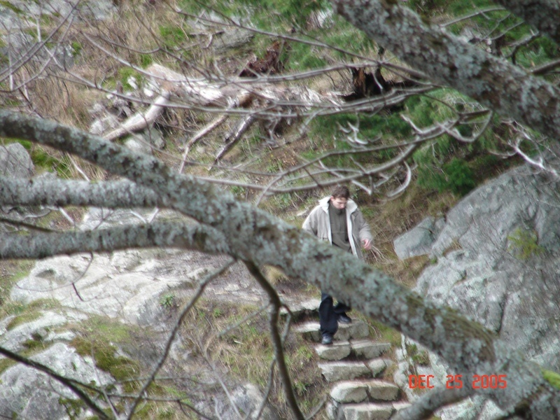 stanley park hiking trails
