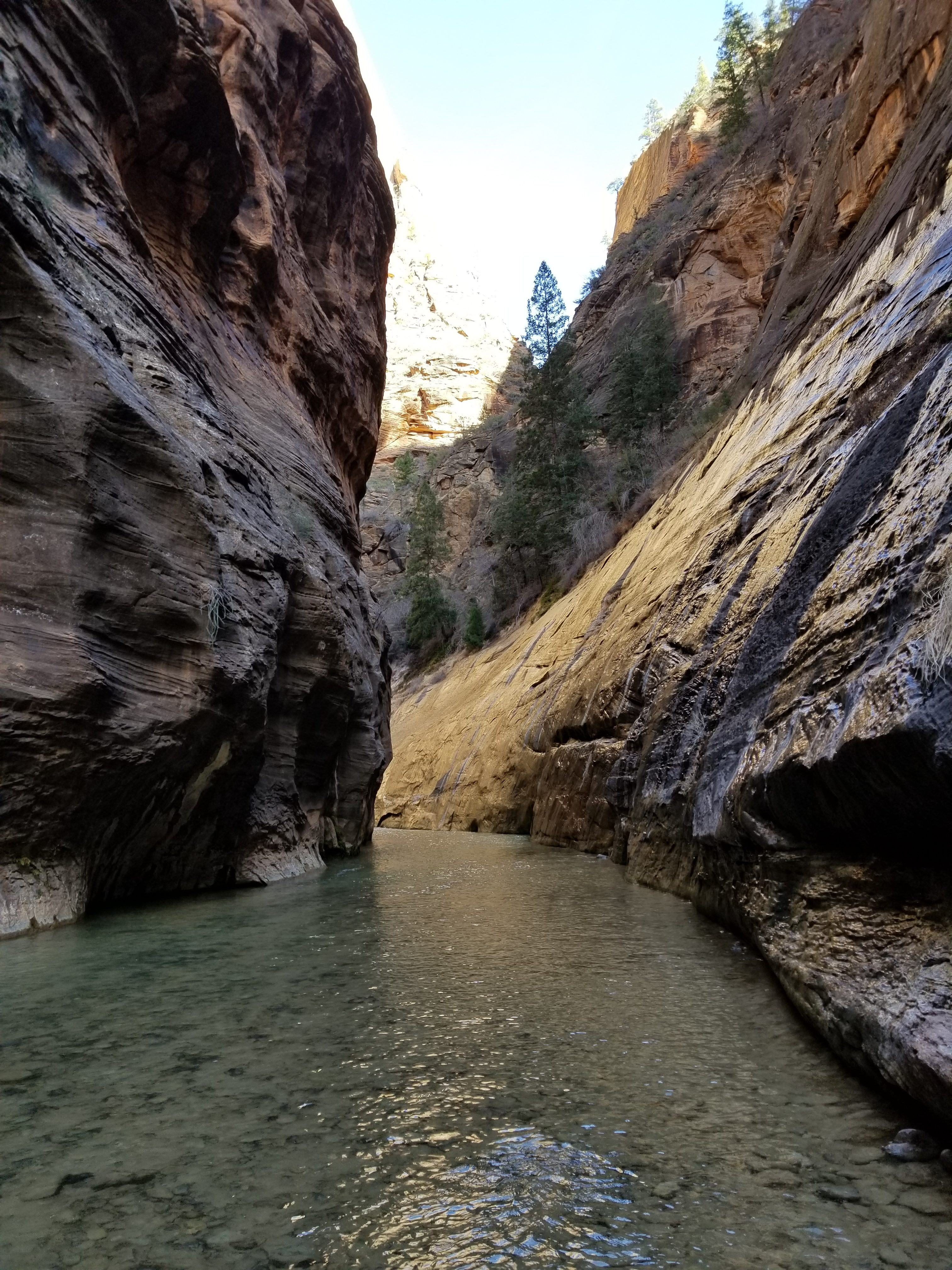 zion national park the narrows dangers