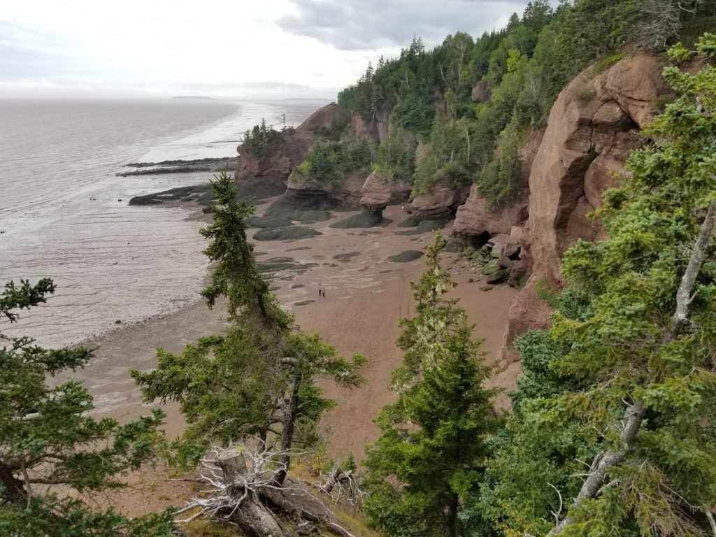 hopewell rocks at bay of fundy