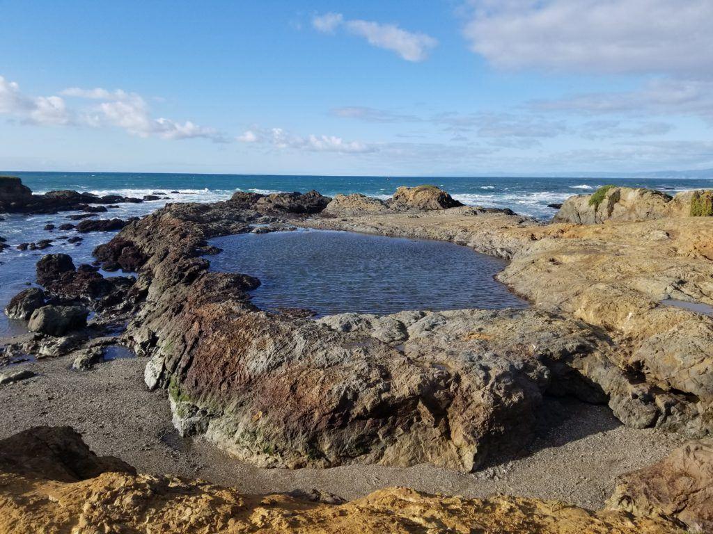 fort bragg beach