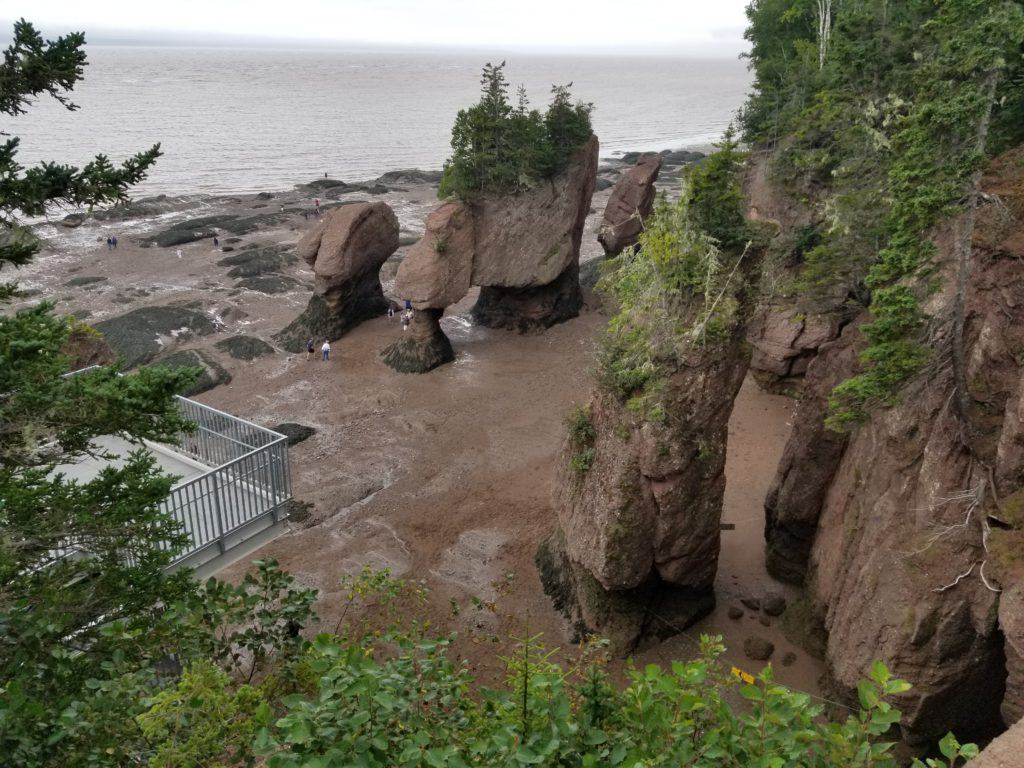 what to do at bay of fundy