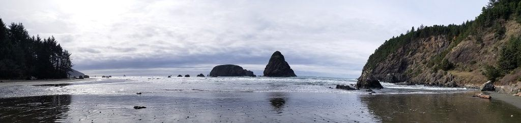 whaleshead beach oregon coast