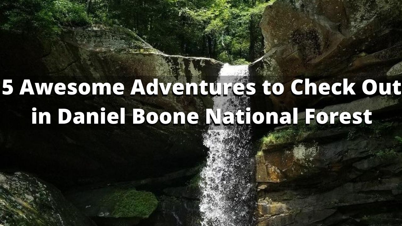 what to do at daniel boone national forest