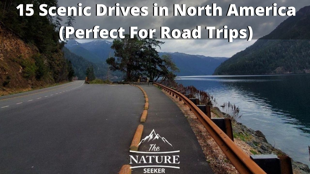 15 scenic drives in north america for road trips
