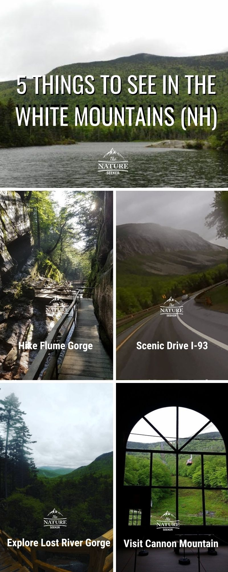 5 things to explore in the white mountains NH infographic