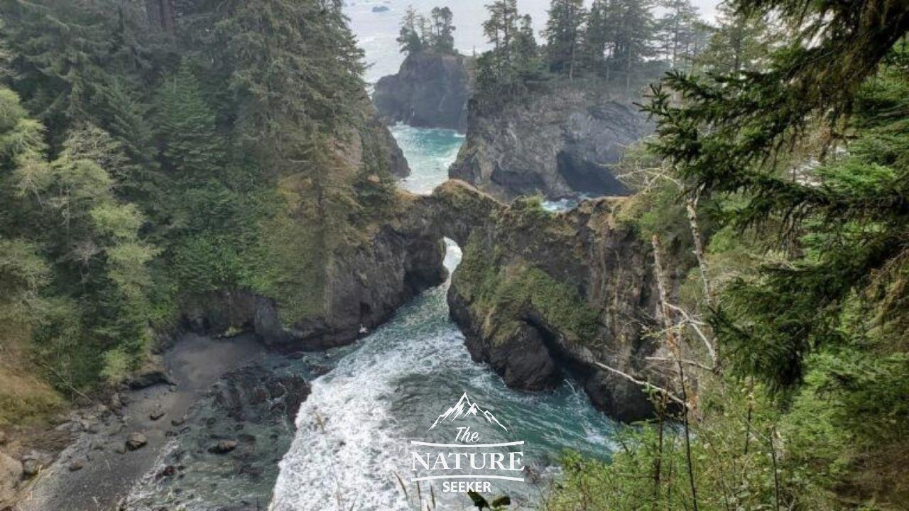 beautiful view of natural bridges in oregon