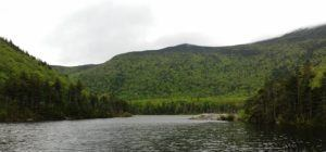 beaver pond in new hampshire