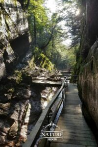 flume gorge state park in the white mountains