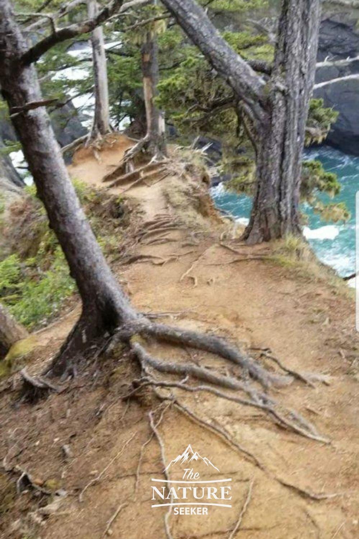 hiking to natural bridges