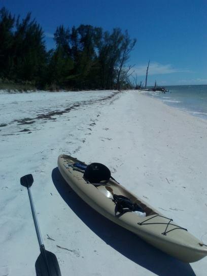 kayak adventures near bradenton beach