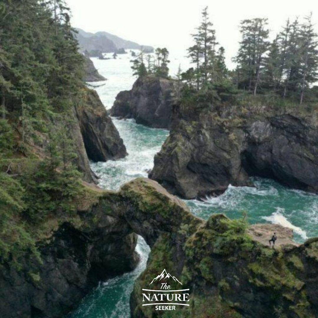 oregon coast scenic drive north america