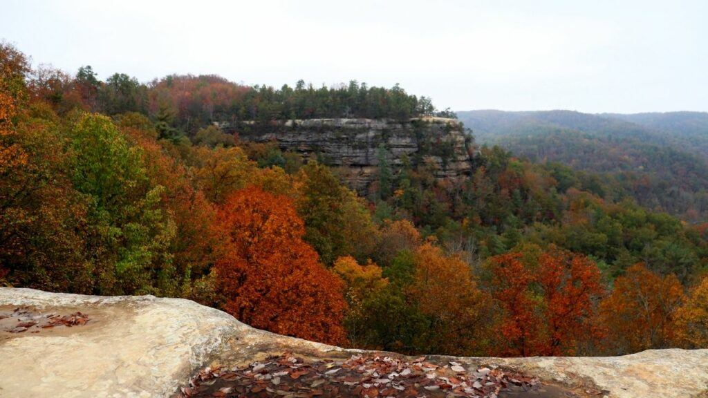 red river gorge overlook daniel boone national forest