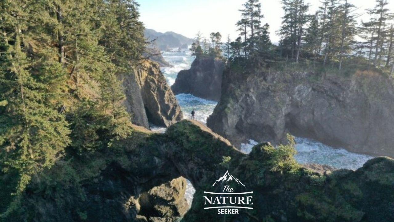 scenic view of natural bridges at samuel h boardman state park
