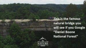skybridge daniel boone national forest