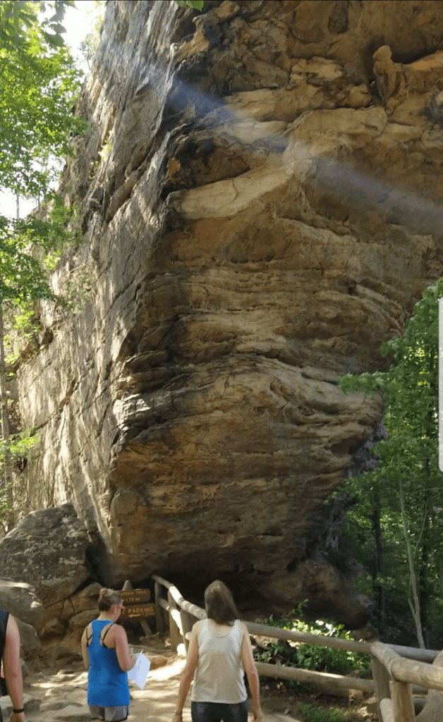 skybridge trail in red river gorge area