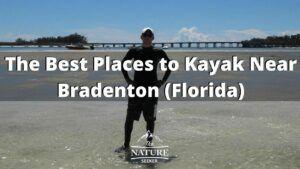 the best places to kayak in bradenton florida