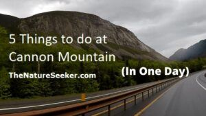 5 Things You Can do in One Day at Cannon Mountain (NH)