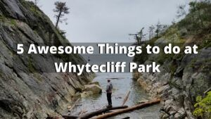 5 Awesome Things to do at Whytecliff Park