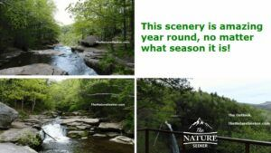3 different spots near kaaterskill falls