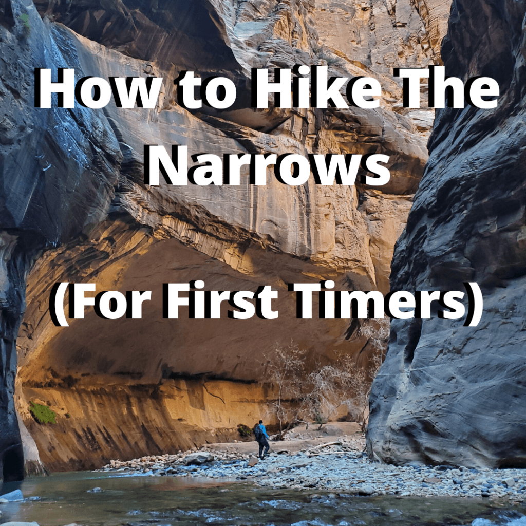 how to hike the narrows of zion for first timers