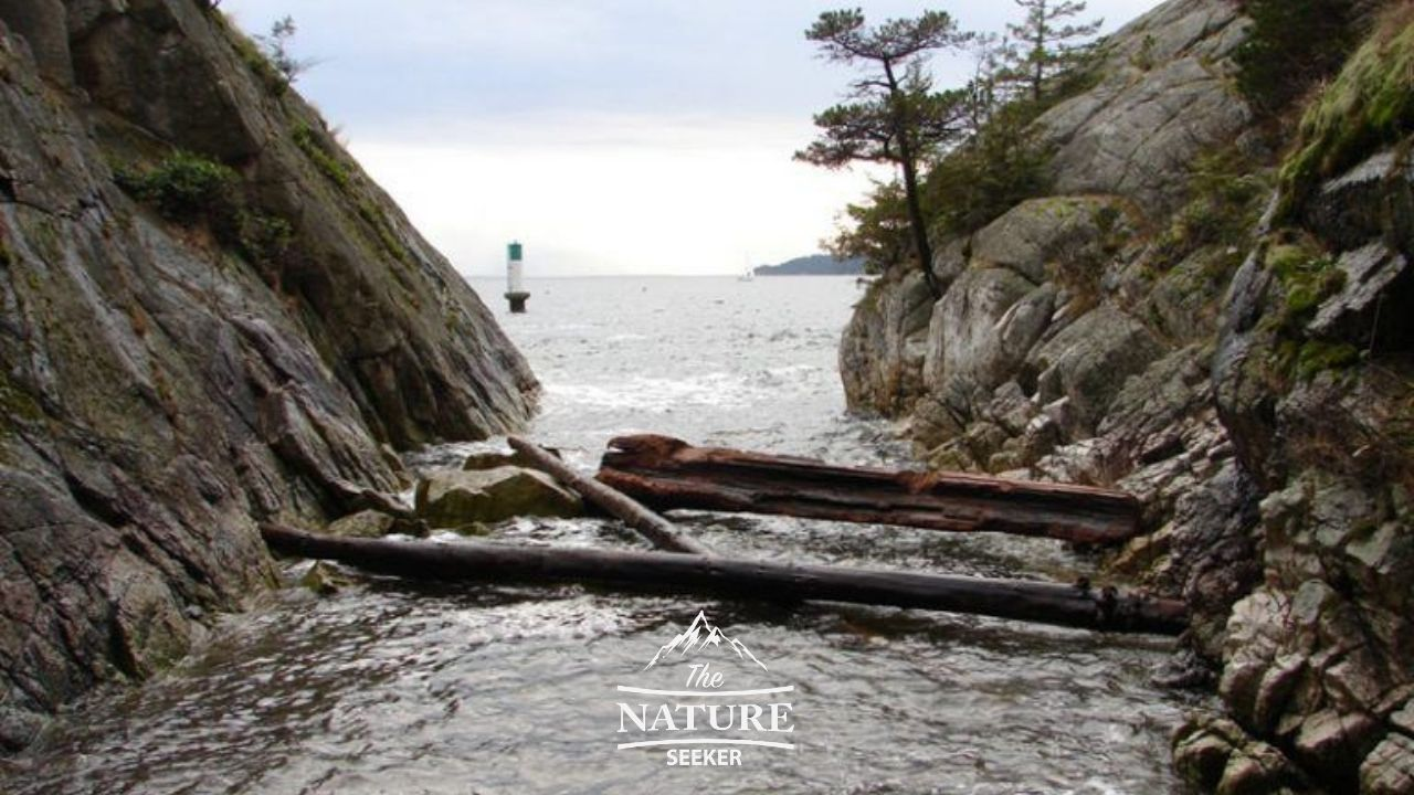 Whytecliff Park hiking trails