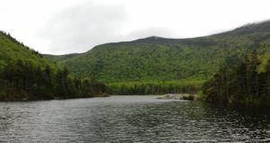 beaver lake pond photo