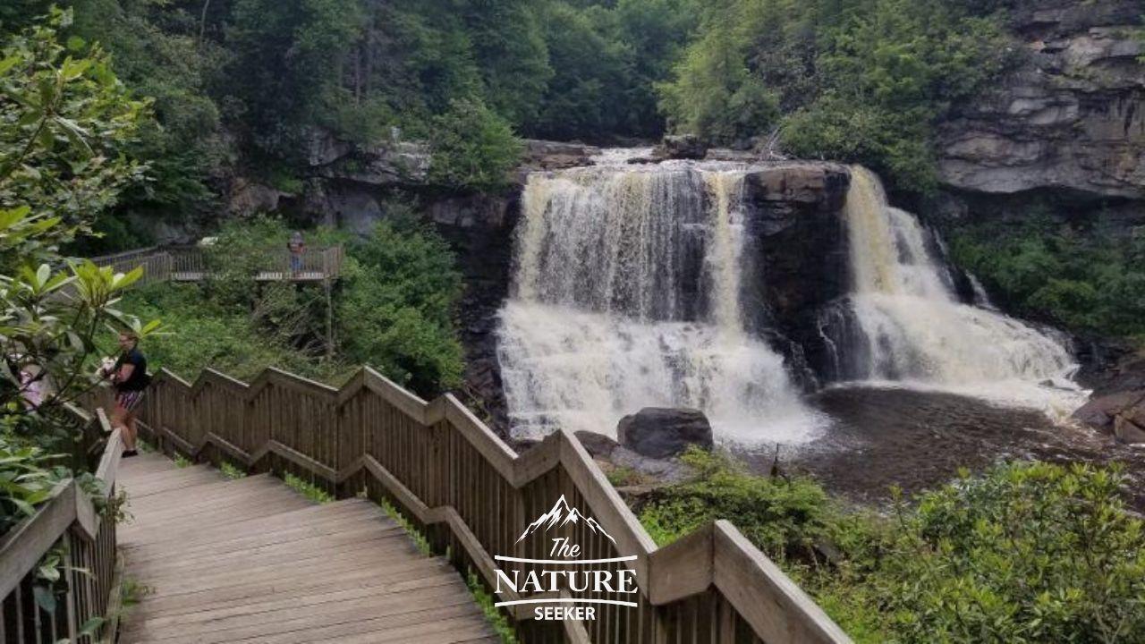 blackwater falls in the appalachian mountains