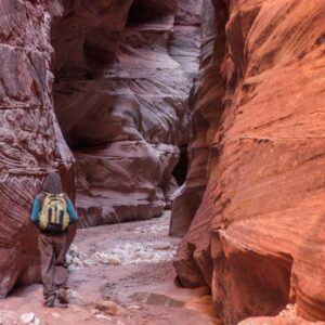 buckskin gulch hike like the narrows 05