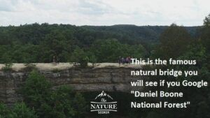 daniel boone national forest skybridge area of the appalachian mountains