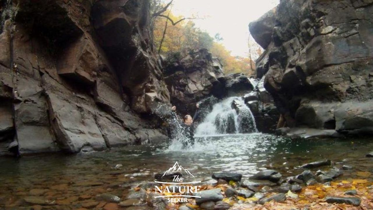 fawns leap cliff diving catskills