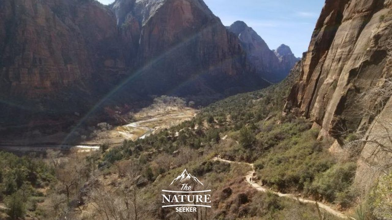 hiking up to angels landing beautiful view
