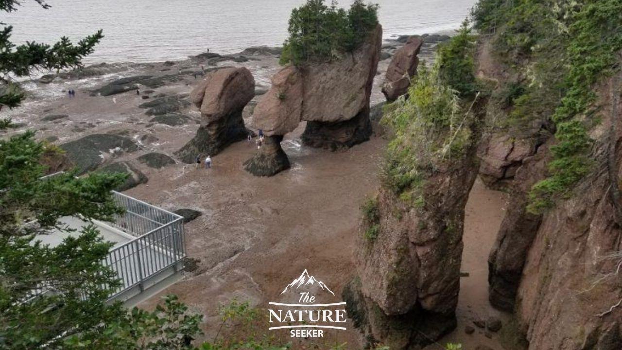 hopewell rocks in nova scotia eastern canada road trip 02