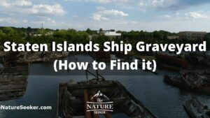 how to find the arthur kill ship graveyard in staten island