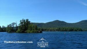 island hopping at lake george