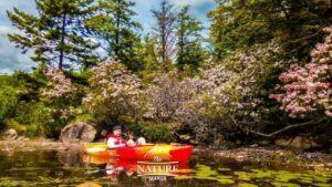 kayak adventures in north south lake