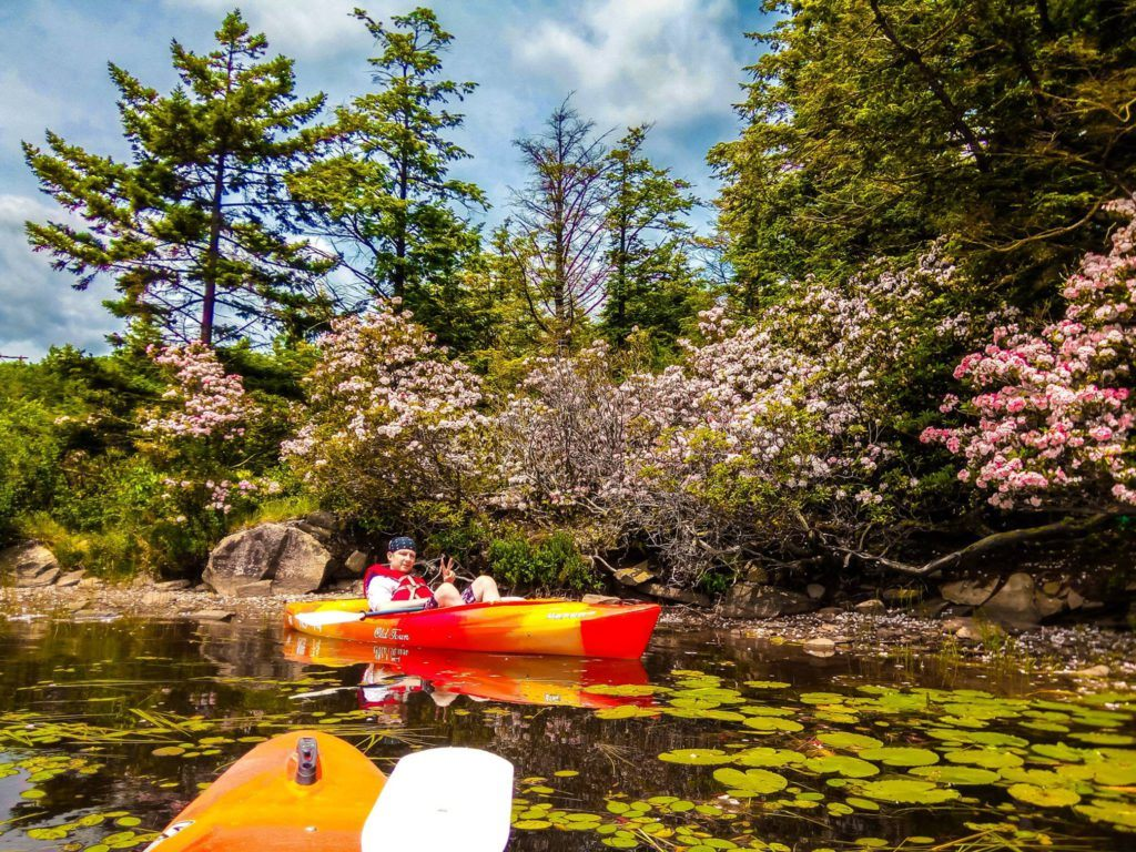 kayaking in north south lake