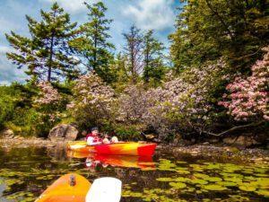 kayaking in north south lake