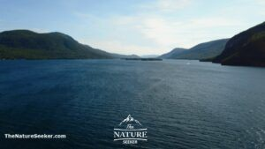 lake george overlook
