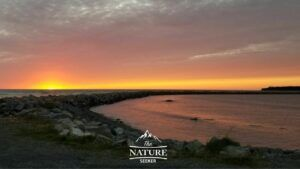 new foundland sunset at rocky harbour eastern canada