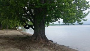 sand bar park in vermont picture
