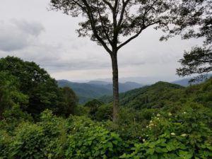 scenic areas in blue ridge mountains