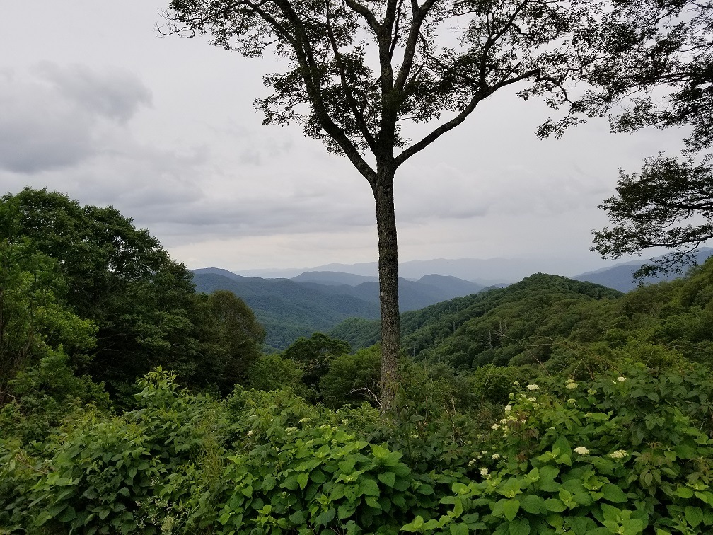scenic areas in blue ridge mountains