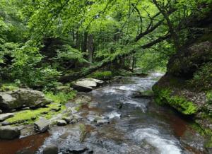 secret hiking trail catskills at kaaterskill falls