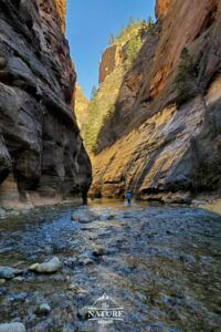 the beginning of the narrows hike