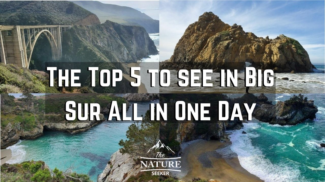 the top 5 things to see in big sur in one day