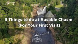 things to do at ausable chasm