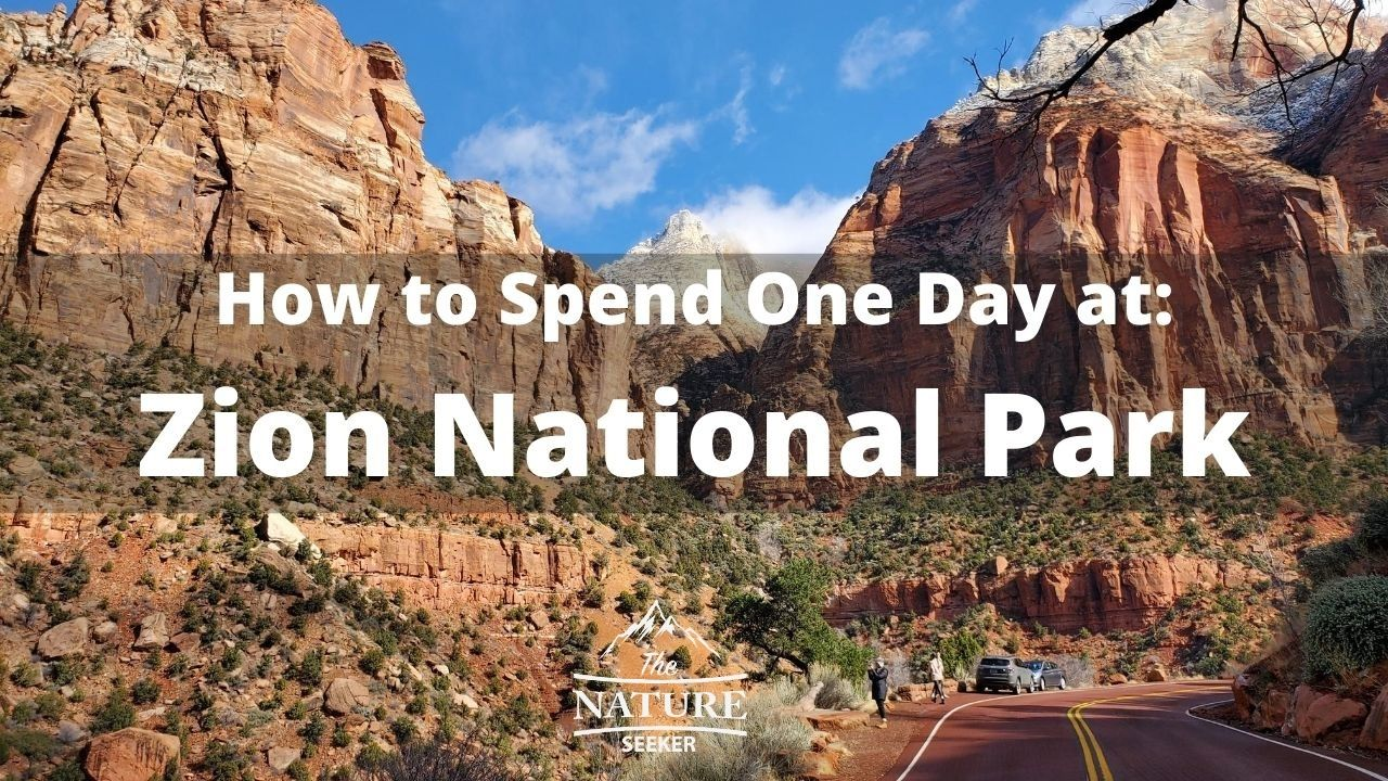 things to do in zion national park in one day