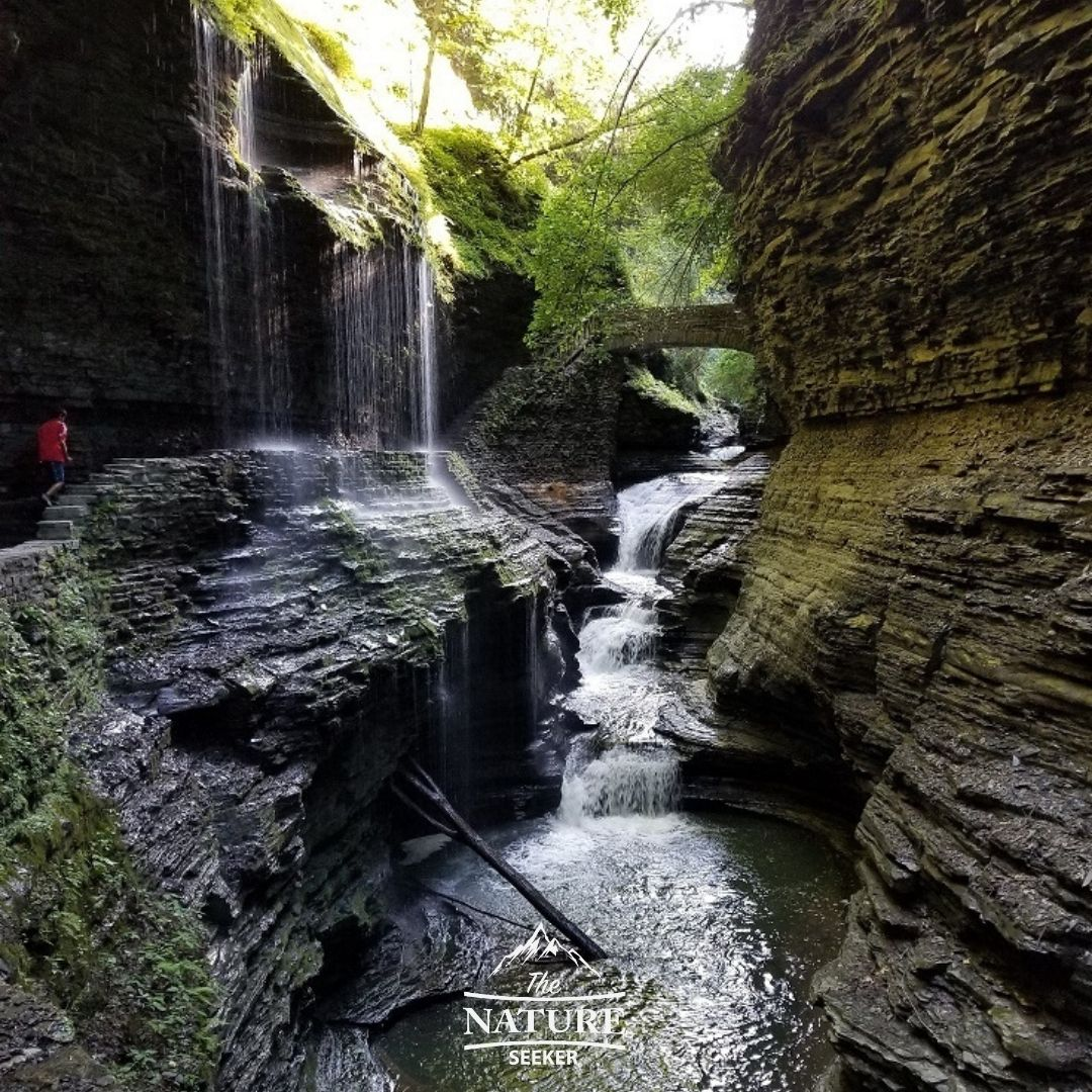 watkins glen state park in the finger lakes 07